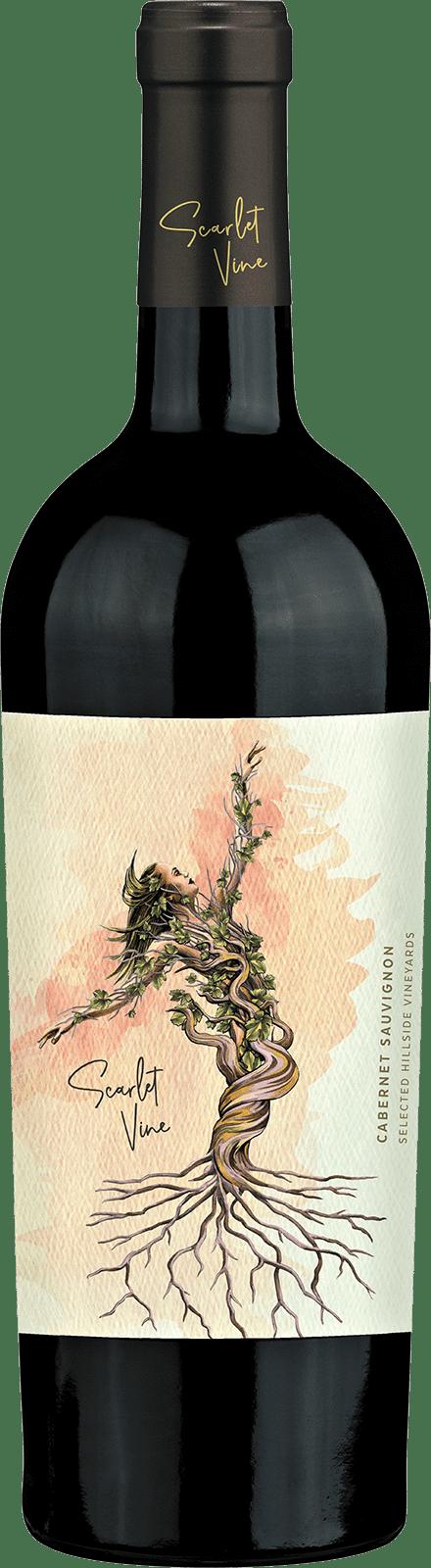 Scarlet Vine - Cabernet Bottle