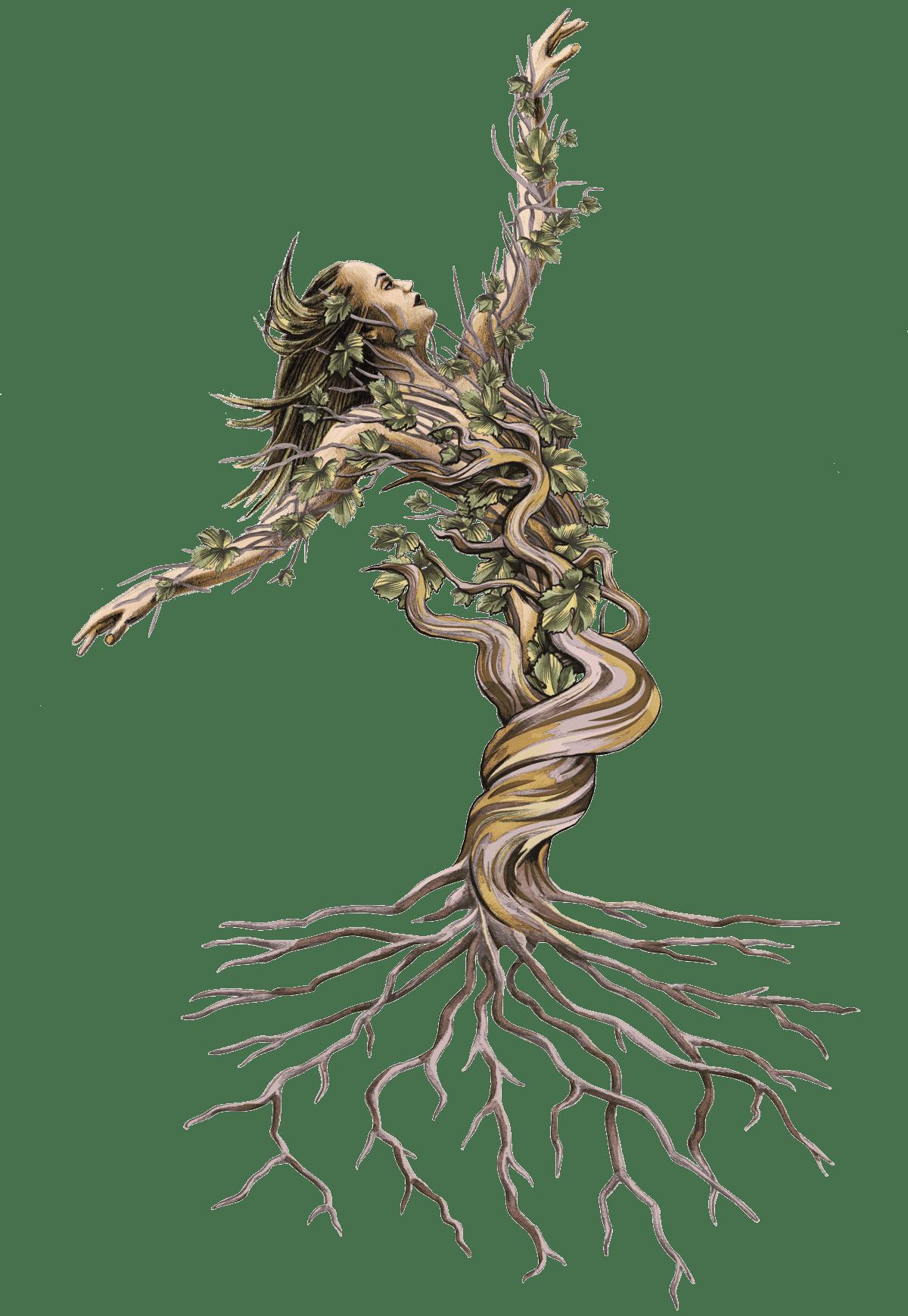 Scarlet Vine - Vine Woman Illustration